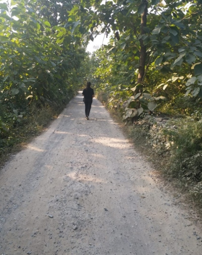 Village Walks